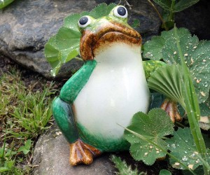 Gelangweilter Frosch