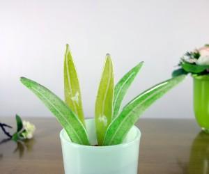 Grünes Fusing-Blatt 18cm