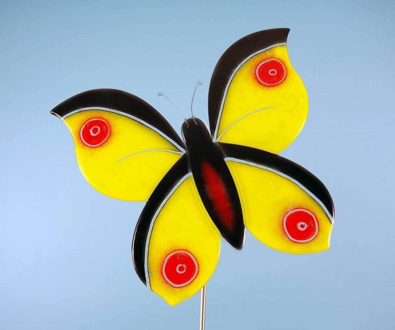 Gelb Achwarzer Schmetterling