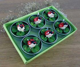 6 Teelichter Glücksklee mit Marienkäfer