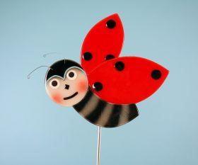 Marienkäfer fliegend