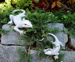 Silber Salamander