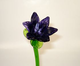 Glasblume purple