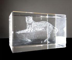 Leopard 3D-Laserquader